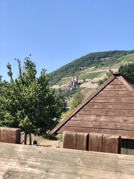 Blick von der Kletterburg